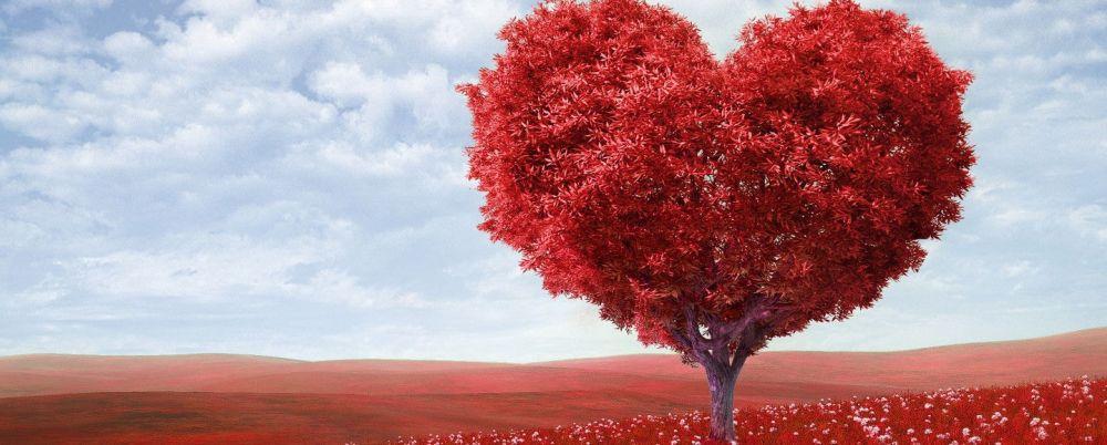 cuore-1440x580
